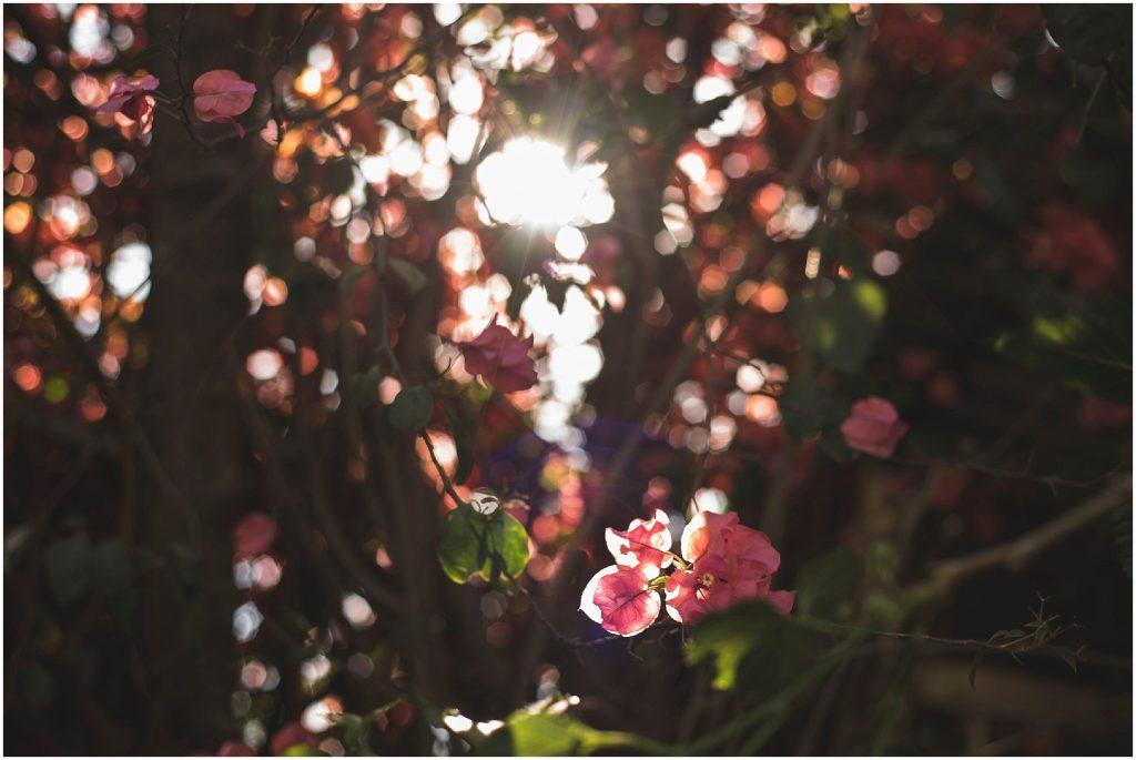 rosalindaolivares-quinta-villa-sacramento-fotografo-bodas-monterrey-024.jpg